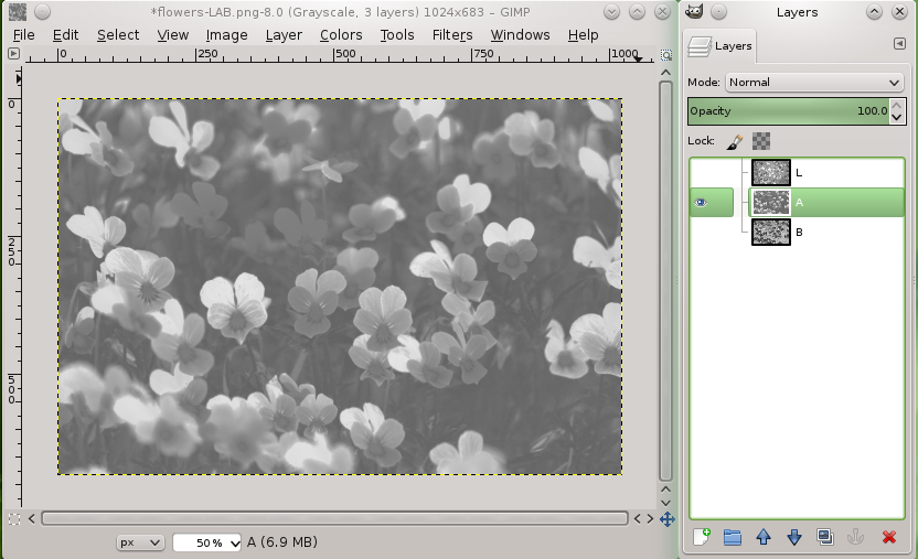 flowers_lab_layers_a